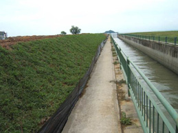 silt-fence-_-turf-slope-for-silt-control-at-tuas-view-thumbnail